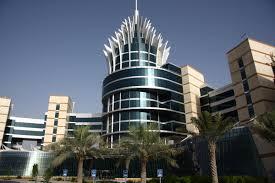 Dubai Silicon Oasis Free Zone (DSO free zone)